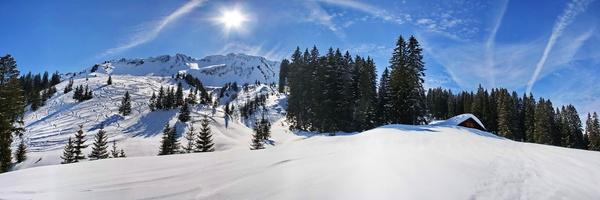 Durch den verschneiten auf Schneeschuhen Bayerischen Wald geht es am 19.Januar unter Führung von einem Förster. Foto: © fotoping - Fotolia.com