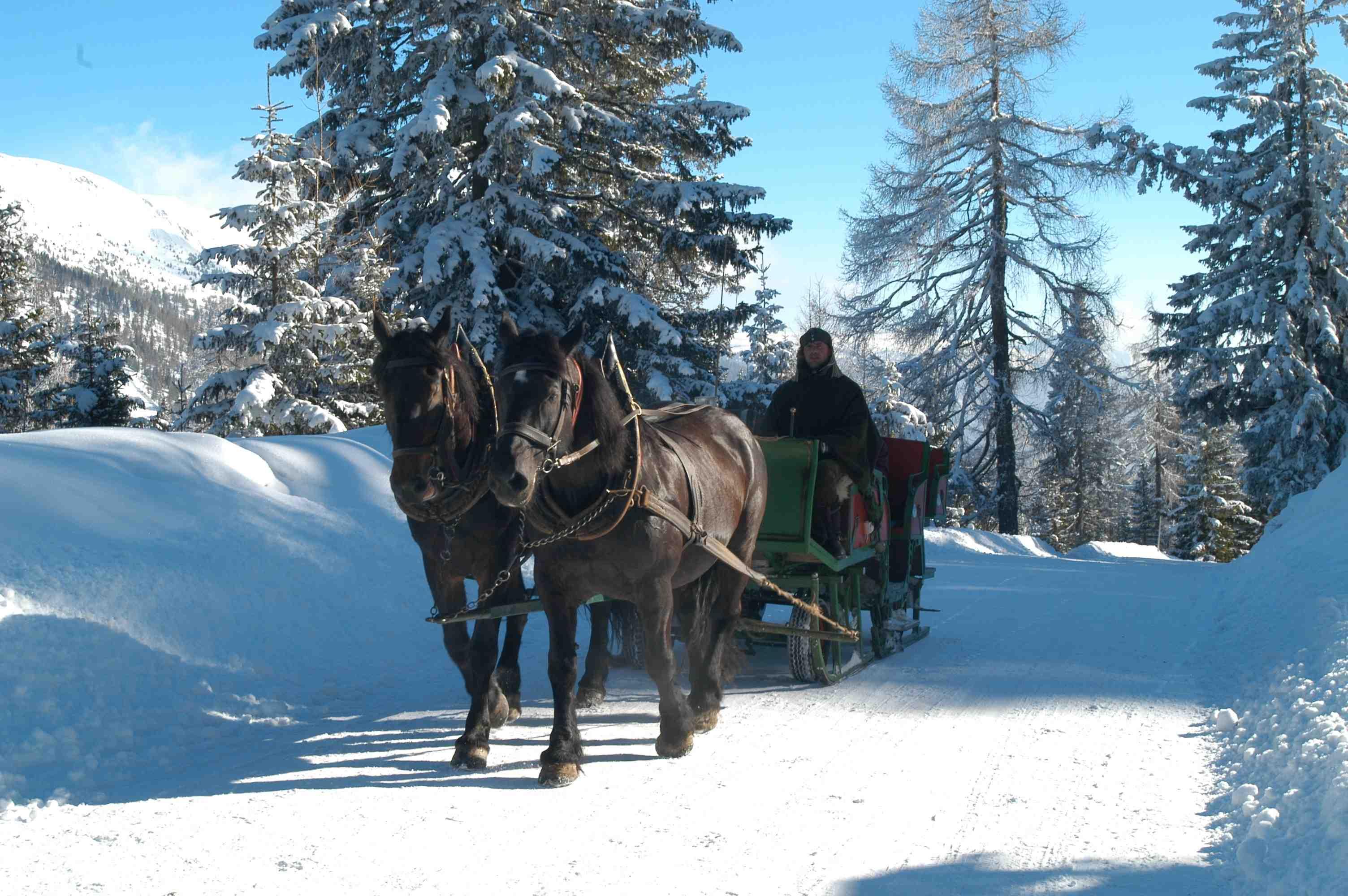 Mit der Pferdekutsche am verschneiten Katschberg. In der Winter Pony Welt können die Kinder nach Lust und Laune spielen. Das Beste sind natürlich die Ponys.  Foto: (c) Tourismusregion Katschberg