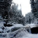 Hier rauscht die Obere Argen durch den winterlichen Eistobel. Foto: (c) Kinderoutdoor.de