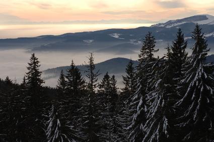 Familien die Outdoor-Abenteuer suchen, sind in den Vogesen richtig: Vom Schlittenfahren, über Schneeschuhwanderungen und Rodelbahnen steht eine große Auswahl bereit.Foto: © Falk - Fotolia.com