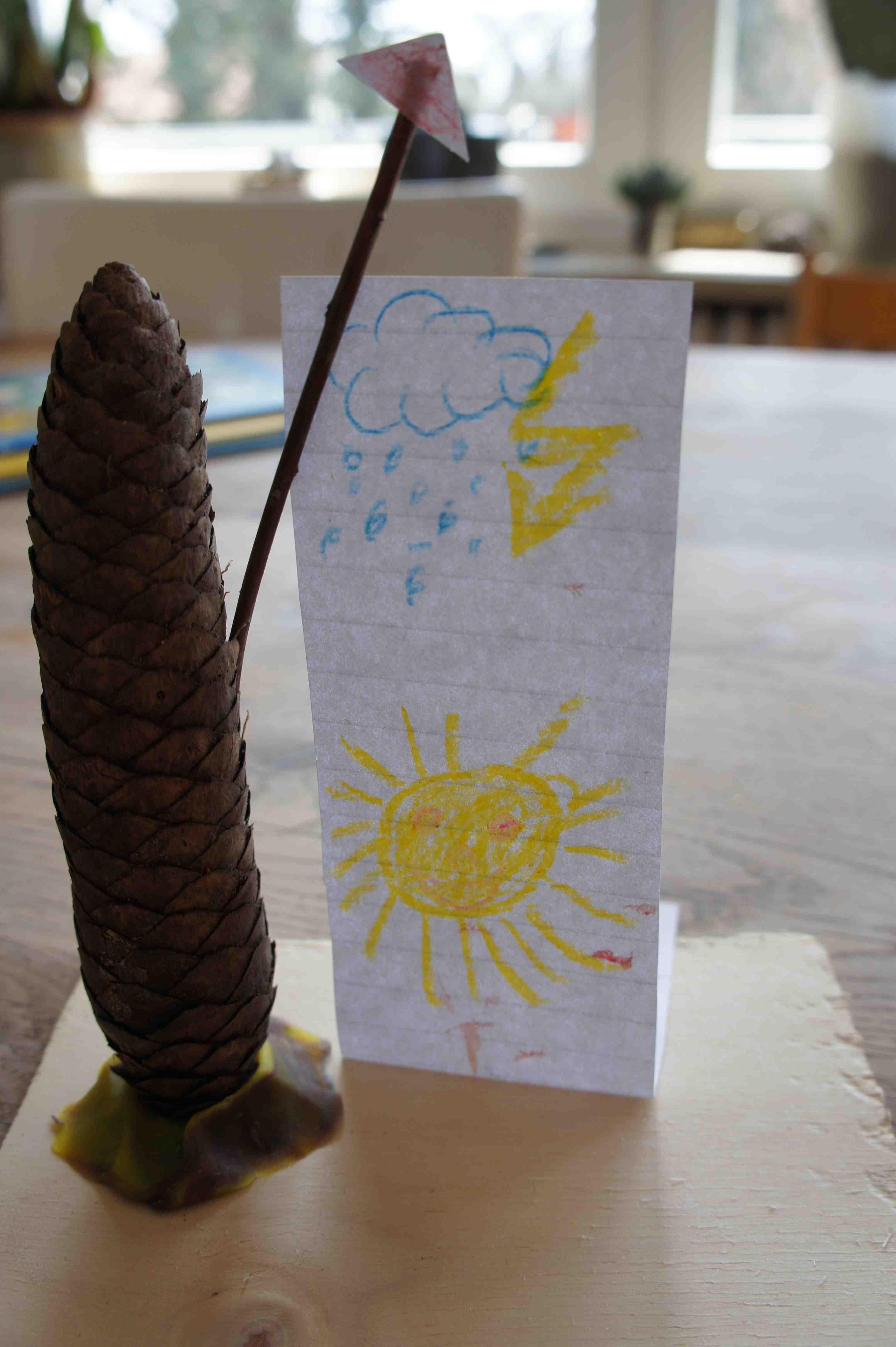 Wie das Wetter wird, verrät Euch der Fichtenzapfen! Foto: (c) Kinderoutdoor.de
