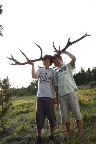 Kinder lernen vom Ranger unter anderem, wie man anhand eines abgeworfenen Geweihes das Alter des Hirsches bestimmt Copyright: Baiersbronn Touristik
