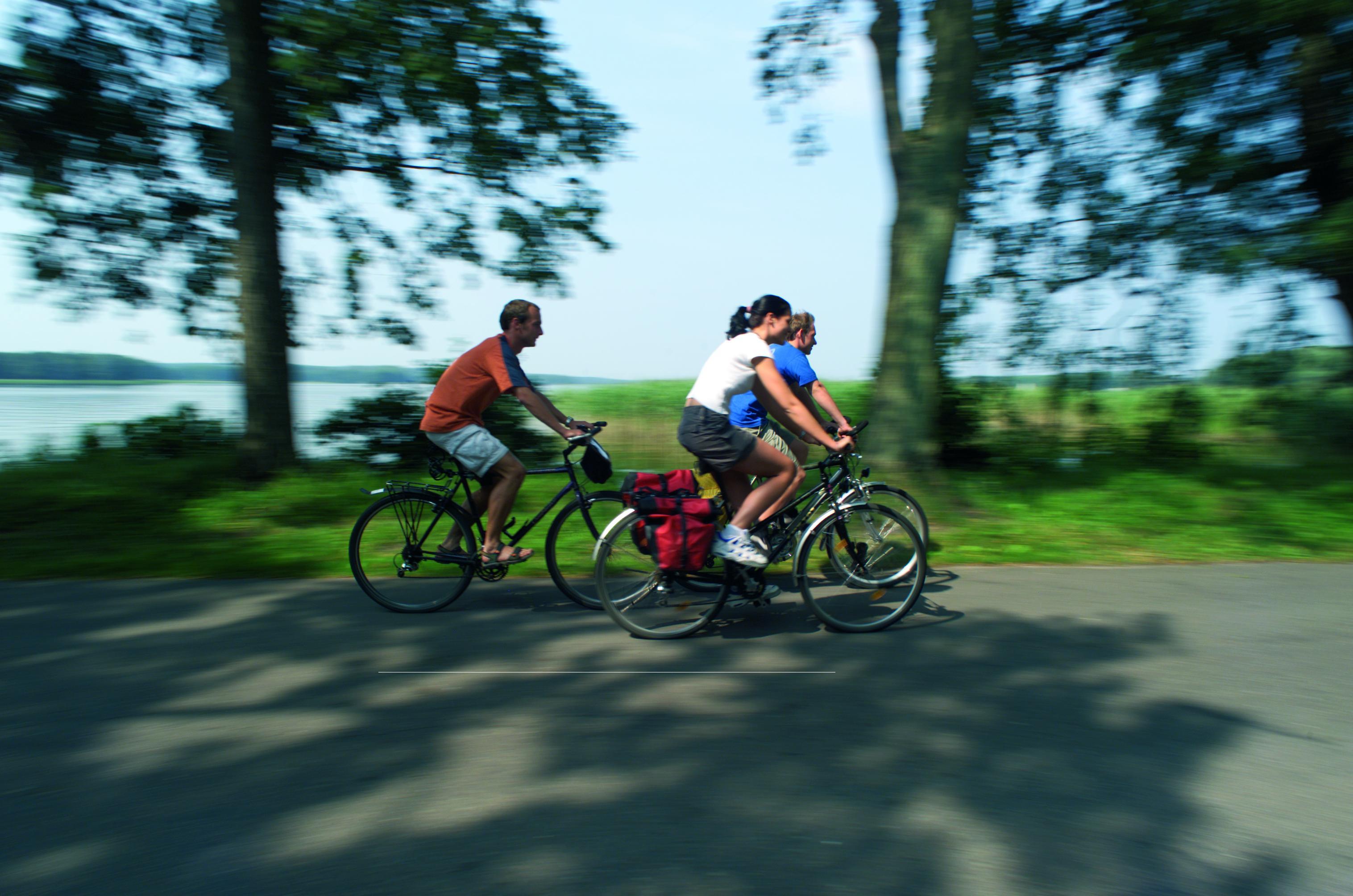 Radeln für einen guten Zweck auf dem Elberadweg in der Prignitz. Foto: ©TMB-Fotoarchiv/Schwarz