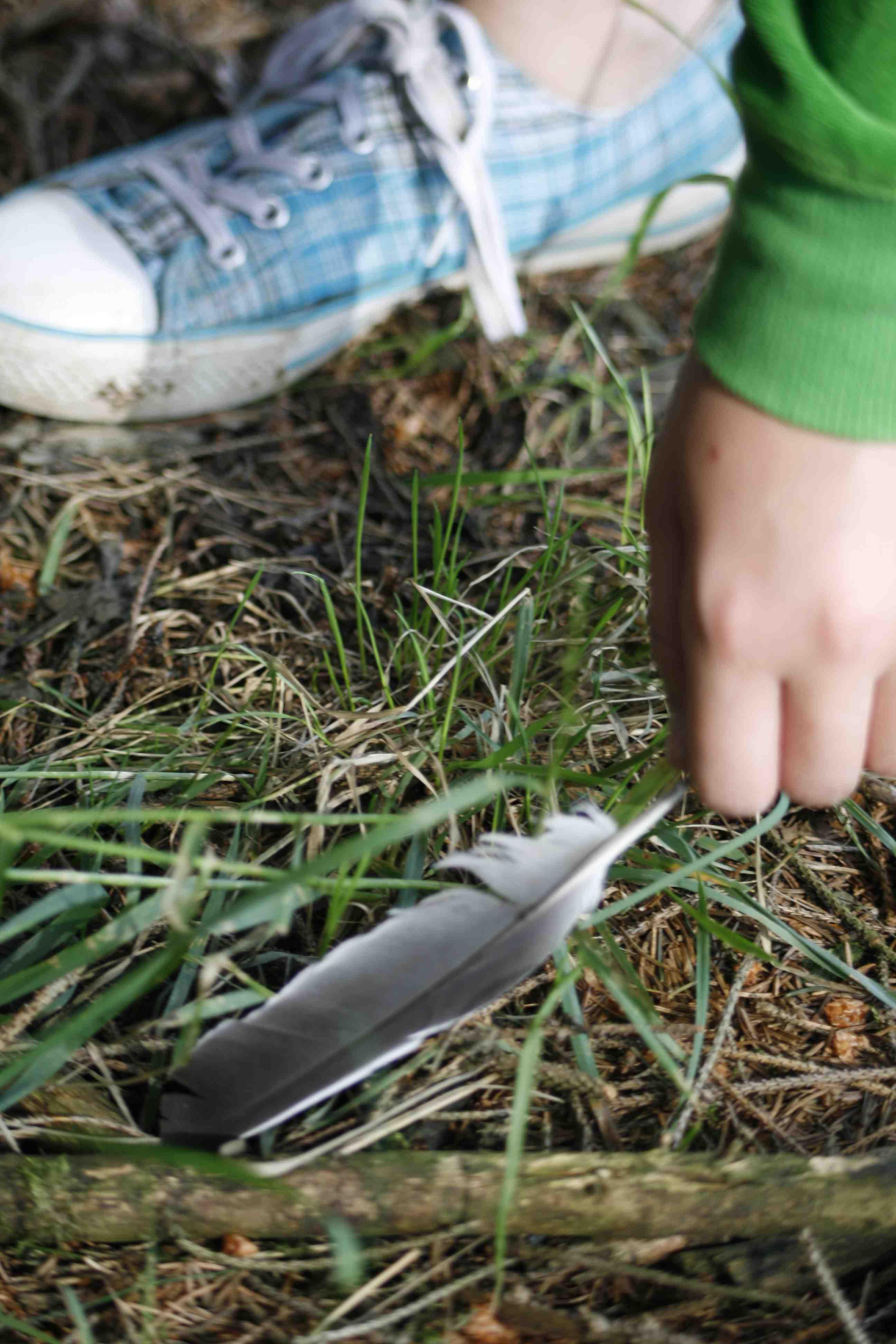 In der Ferienwelt Winterberg begreifen die Outdoor Kinder den Wald mit allen Sinnen. Foto (c) Ferienwelt Winterberg