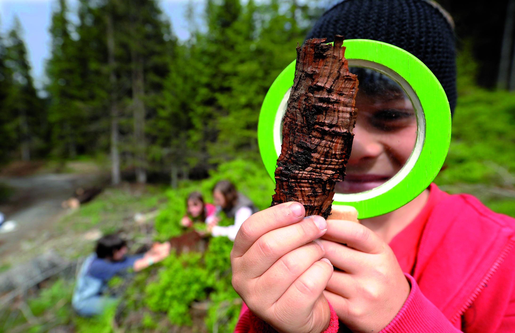 Im Pitztal erforschen die Kinder zusammen mit einem Parkranger den Naturpark Kaunergrat.Langeweile? Fehlanzeige! Foto:(c) Naturpark Kaunergrat