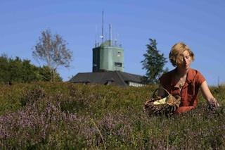 Heidelblitz! Wer beim Urlaub im Sauerland fleissig Beeren sammelt hat eine super Grundlage für tolle Rezepte! Foto: (c) Ferienwelt Winterberg