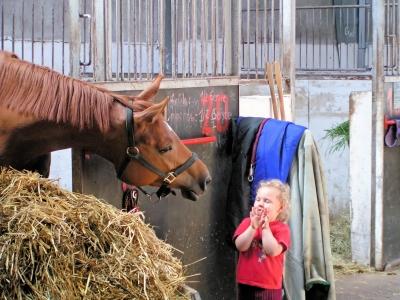 """""""Keine Sorge, ich tu nix!"""" Bei den Reiterferien bekommen die Kinder den ersten Kontakt zum Pferd. Foto: (c)  Rainer Klooster  / pixelio.de"""