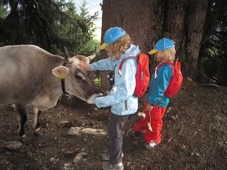 Kinder und Tiere. Die Kühen, welche uns auf dem Weg nach Fiss entgegenkamen,nahmen geduldig die Streicheleinheiten der Kinder entgegen. Foto: (c) Kinderoutdoor.de