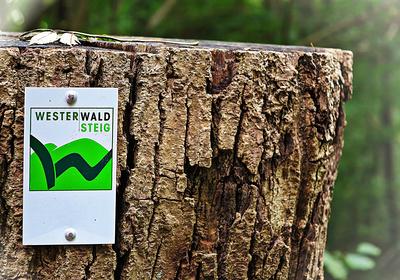 Wem der Westerwaldsteig im Herbst zu heftig ist, der steigt auf E-Bikes um. Die gibt es im Westerwald zu mieten. Foto: (c) Guenter Hamich  / pixelio.de