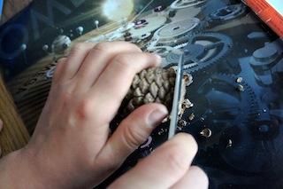 An den Zapfen: Mit dem Taschenmesser schneidet Ihr an der Spitze den Zapfen flach ab. Foto: (c) Kinderoutdoor.de