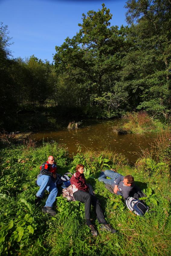 Ruhe in der Natur finden, das gibt es auf dem Soonwaldsteig. Copyright: Trägerverein Naturpark Soonwald-Nahe e.V.