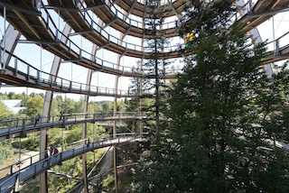 1.300 m ist der Baumwipfelpfad in Neuschönau (Bayerischer Wald) lang und das ist Weltrekord! Quelle: Die Erlebnis AKADEMIE AG