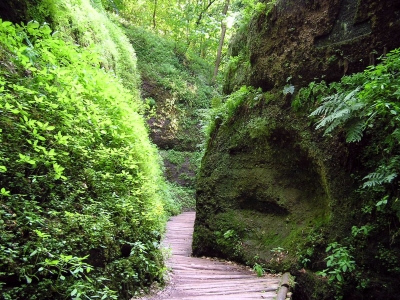 Wandern in der Drachenschlucht im Thüringer Wald ist ein Erlebnis! Foto: (c) Jürgen Weingarten  / pixelio.de