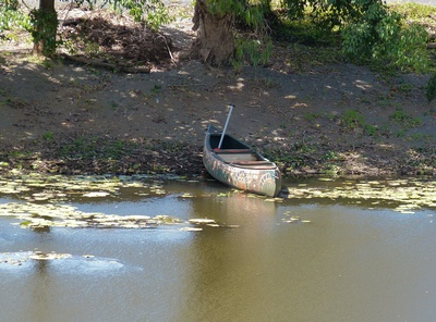 Auf der Bode lässt sich mit dem Kanu noch unberührte Natur entdecken.  Foto: (c) Dieter Schütz  / pixelio.de