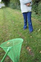 Eine Station bei der Herbst Schnitzeljagd ist das Zapfenfangen. Hier ist Schnelligkeit und ein gutes Auge gefordert. Foto (c) Kinderoutdoor.de