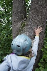 Hoch hinaus bei der Schnitzeljagd im Herbst. Baumspringen ist eine ideale Station im Wald und Park. Foto: (c) kinderoutdoor.de