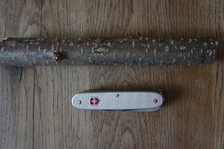 Los geht´s mit dem Holzschnitzen: Ein Taschenmesser (mit Ahle und Säge), ein etwas 20 cm langer Haselnuss-Ast und ein kleiner Zweig.  Foto: (c) kinderoutdoor.de