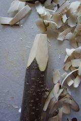 Mit einem Schnitt flachen unsere kleinen Holzschnitzer die Spitze ab. Foto: (c) Kinderoutdoor.de