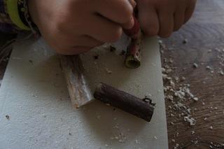 Mit den Buntstiften den Hollunder anmalen. Foto.(c) Kinderoutdoor.de