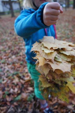 Bei unseren Bastelideen für den Herbst, sammelt Ihr fleißig Laub ein. Foto: (c) Kinderoutdoor.de