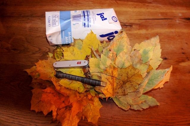Bastelideen Herbst: Eine Vase aus Herbstlaub. Hier ist das Bastelmaterial, das Ihr braucht: Laub, Draht, Tetrapack und ein Taschenmesser. Foto: (c) Kinderoutdoor.de