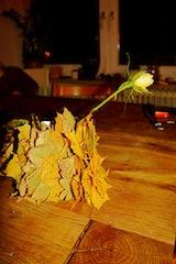 So sieht die Herbstlaub Vase aus! Foto: (c) Kinderoutdoor.de