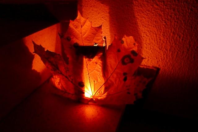 So sieht das Ergebnis vom Laternen basten aus! Je bunter das Laub ist, um so schöner leuchtet die Laterne nachts. Foto: (c) Kinderoutdoor.de