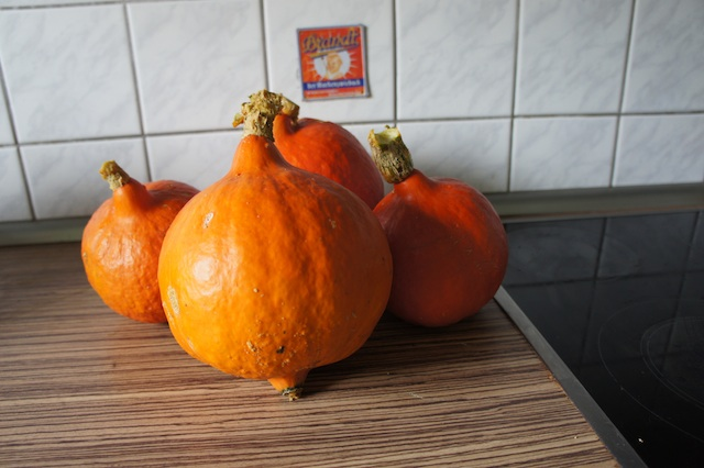 Ein raffiniertes Rezept für Kürbissuppe gibt es heute passend zum Herbstwetter.  Foto: (c) Kinderoutdoor.de