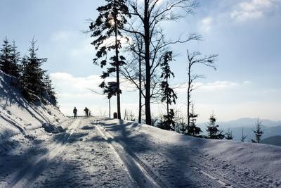 Langlauf ist nahezu überall möglich und ein perfektes Outdoor Abenteuer im Winter. Foto. (c) Rainer Sturm  / pixelio.de