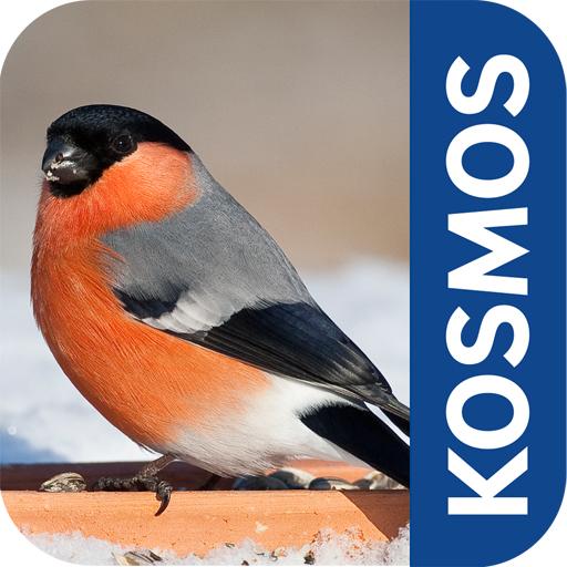 Vögel im Winter füttern und bestimmen. Mit der App vom Kosmos Verlag ist das alles kein Problem. Foto: (c) Kosmos Verlag