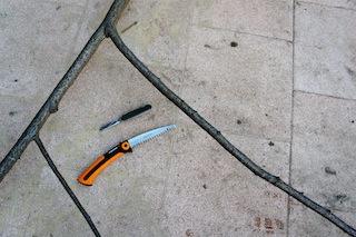 Ein Steckenpferd basteln wir aus einer Astgabel und brauchen eine Säge und ein Taschenmesser. Foto (c) kinderoutdoor.de
