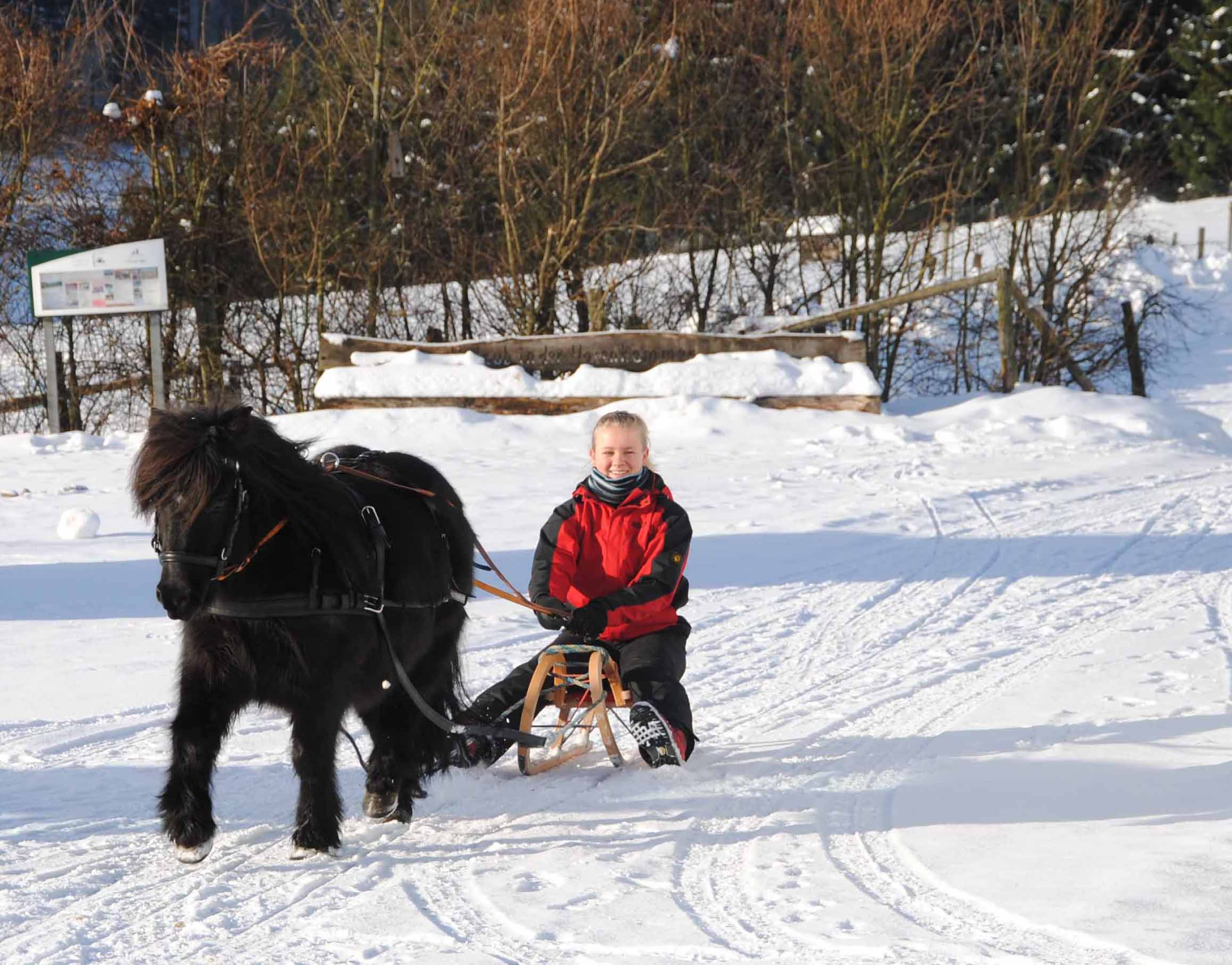 """Urlaub auf dem Bauernhof ist auch im Winter ein geniales Erlebnis. Foto:(c)  Ferienhof Zur Hasenkammer, Fam. Schmidt, Medebach"""""""