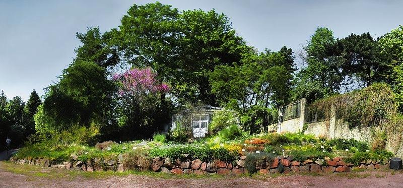 Der älteste botanische Garten Deutschlands ist in Jena. Foto: Martin Schrattenholz; Creative Commons Attribution-Share Alike 3.0 Germany