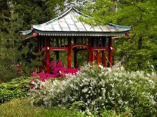 Ja was sind wir jetzt in Japan? Nein, das ist der botanische Garten von Berlin. Foto: (c)  © I. Haas, Botanischer Garten und Botanisches Museum Berlin-Dahlem
