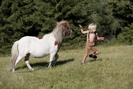 Was essen Ponys am liebsten? Kleine blonde Buben! Tierisch nah kommen sich die beiden am Katschberg. foto (c) Tourismusregion Katschberg/ Salzburger Land-Kärnten