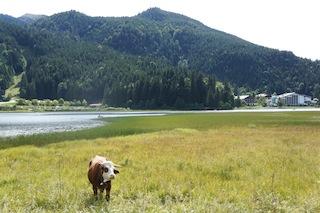 Der Spitzingsee ist der Ausgangspunkt zur Schönfeldhütte. Alle Gondoliere nehmen die Taubensteinbahn.  Foto (c) Kinderoutdoor.de