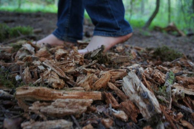 Morsches Holz ist auch ideal für den eigenen Barfußweg. Foto(c) Kinderoutdoor.de