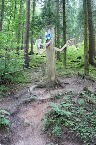 Wo ist der Schatz bei den Waldmeisterschaften? Foto (c) Kinderoutdoor.de