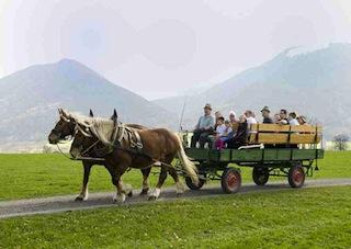 Reiten oder Kutschenfahrten sind im oberbayerischen Bad Feilnbach ein Muss für alle Pferdefreunde.  Copyright: Kur- und Gästeinformation Bad Feilnbach