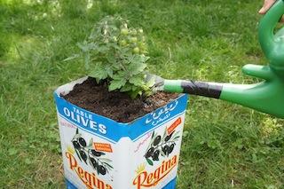 Wasser marsch! Upcycling macht auch den Kindern Spaß! Foto (c) Kinderoutdoor.de
