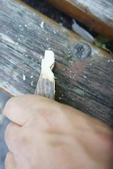 Diese Kerben halten später den Gummi. Foto (c) kinderoutdoor.de