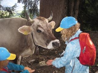 Auf den Wegen zu Berghütten trifft man die lustigsten Leute; meint die Kuh! Foto (c) Kinderoutdoor.de