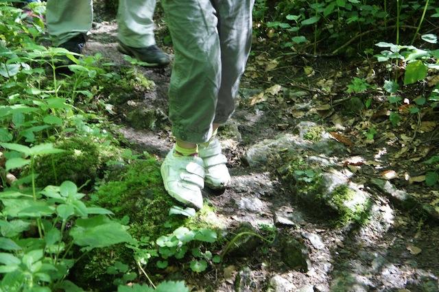 Mit schicken Halbschuhen durch den schwäbischen Dschungel? Geht doch! Foto(c) Kinderoutdoor.de