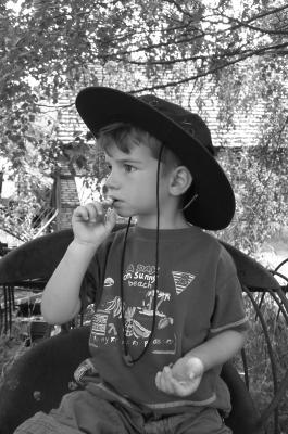 Ein heißer Ritt steht Euch bei der Cowboy Schnitzeljagd bevor.  Foto (c) Karina Sturm  / pixelio.de