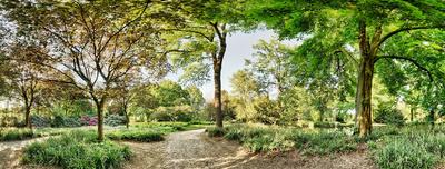 Der Park vom Aasee ist einer der Schönsten im Land.   Foto (c) Sascha Hübers  / pixelio.de
