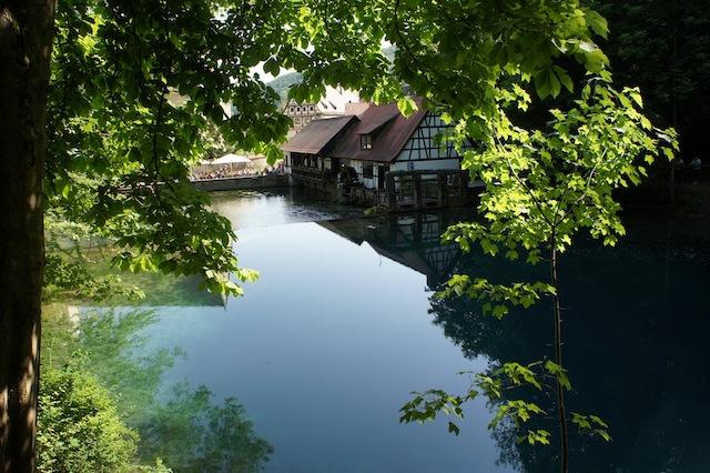 Kleiner Fluss, große Quelle: Die Blau. foto (c) Kinderoutdoor.de