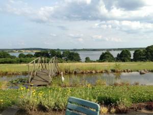 Wilde, unberührte Landschaften: Das ist die Mecklenburgische-Seenplatte Foto (c) Steffen P.