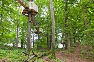 Heiße Sache! Der Kletterwald Hoherodskopf in Hessen befindet sich in einem Vulkangebiet.  Foto (c) Kletterwald Hoherodskopf