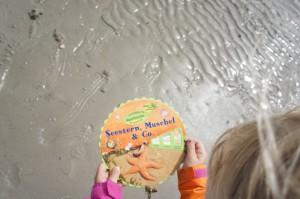 Selbst gedreht, statt einer App. Mit der Coppenrath Forscher Drehscheibe lernen die Kinder das Meer und seine Bewohner kennen.  Foto (c) Kinderoutdoor.de