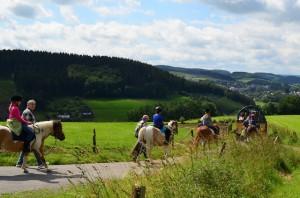 Der Name ist Programm! Ponyhof Meier darf sich Ferienhof 2014 nennen.  Foto (c) Ponyhof Meier, Fam. Meier, Eslohe/Sauerland